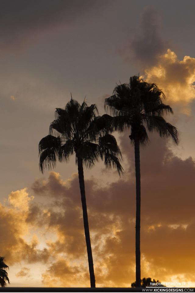 florida sunset 12