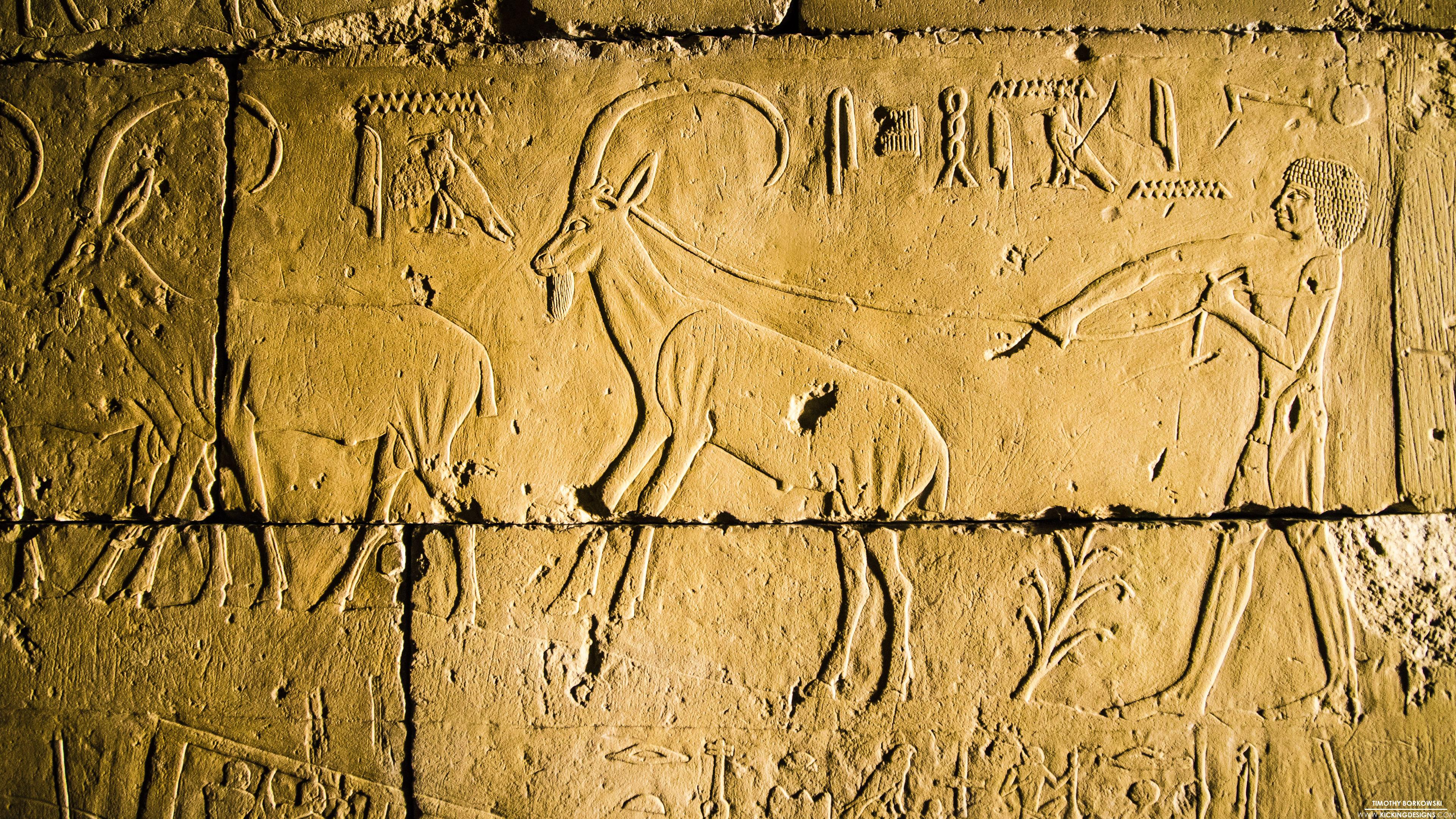 Egyptian Hieroglyphs 9-16-2016 Wallpaper Background