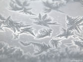 frosty - Ice crystals covering glass window.