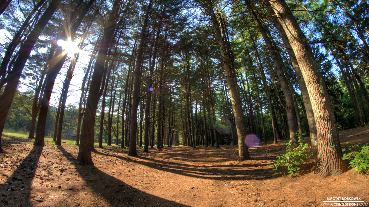peoples-forest-7-20-2012_hd-720p