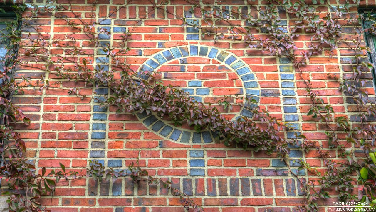vine-over-bricks-11-20-2012_hd-720p