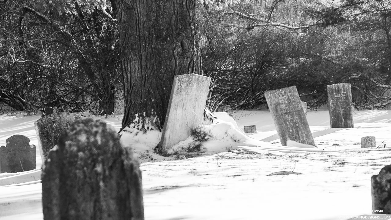 snowy-graveyard-2-1-2014