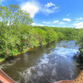 farmington-river-5-14-2014