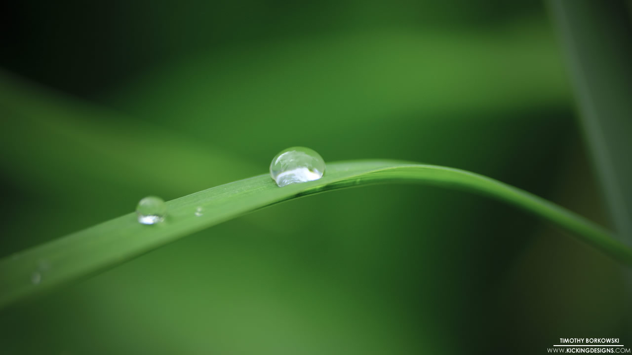 water-droplet-6-7-2014