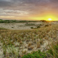 cape-dunes-at-sunrise-8-28-2014