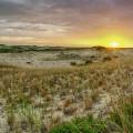 cape-dunes-at-sunrise-8-28-2014