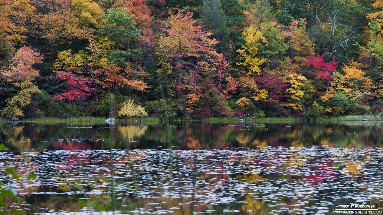 burr-pond-10-23-2014