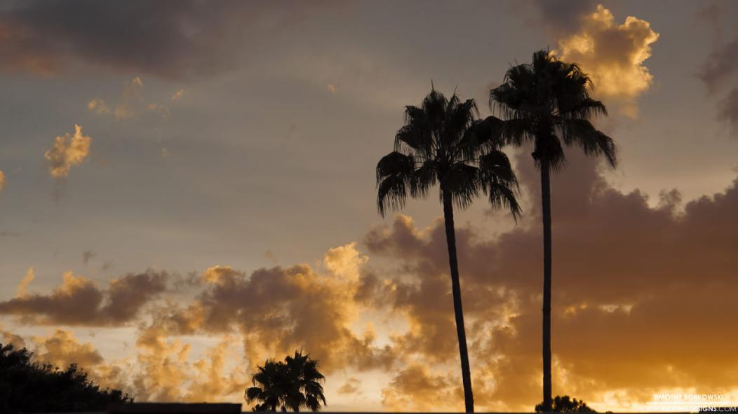 florida-sunset-12-8-2014