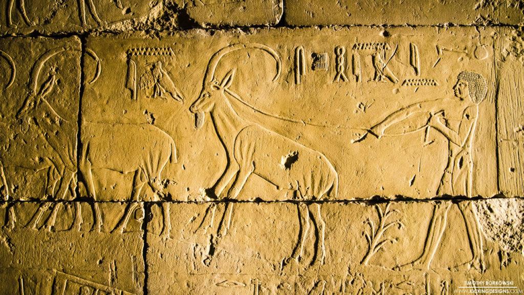 Egyptian Hieroglyphs 9-16-2016